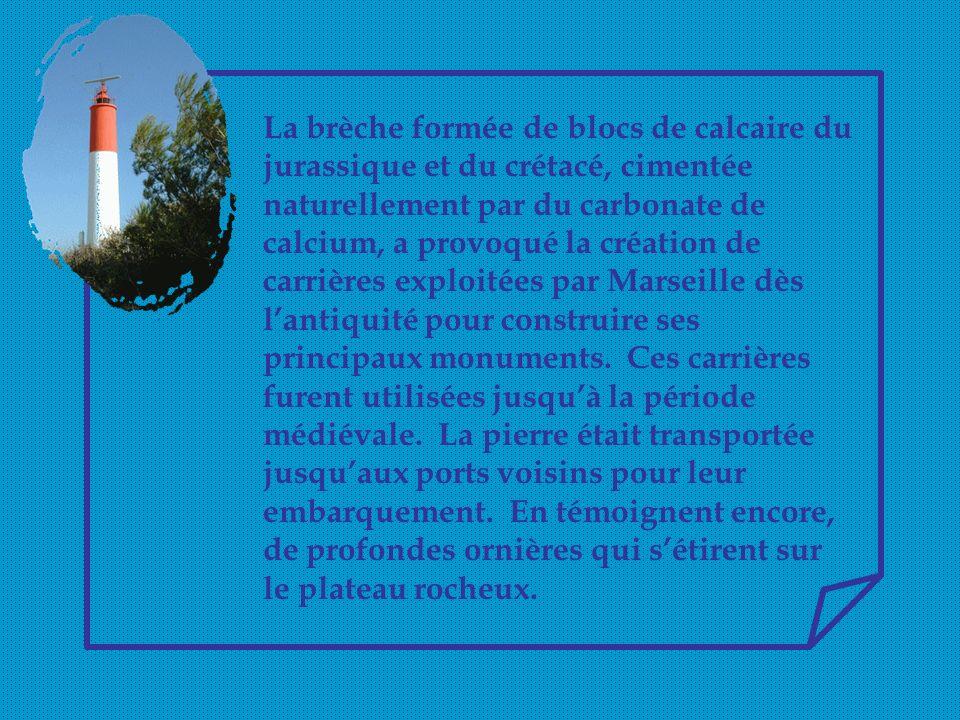 La brèche formée de blocs de calcaire du jurassique et du crétacé, cimentée naturellement par du carbonate de calcium, a provoqué la création de carrières exploitées par Marseille dès l'antiquité pour construire ses principaux monuments.