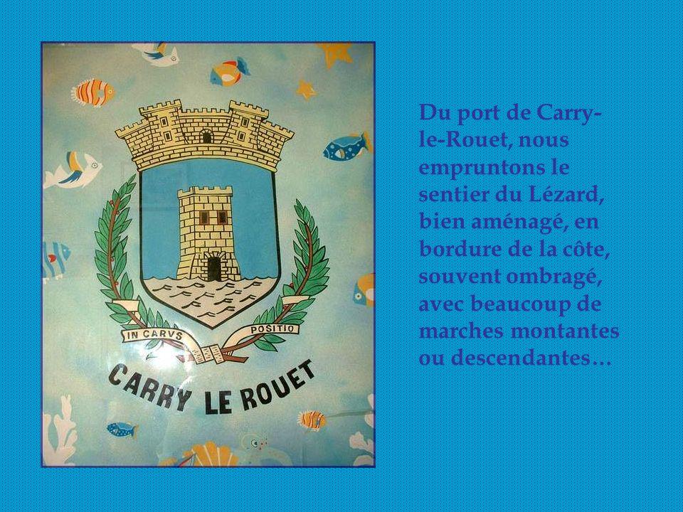 Du port de Carry-le-Rouet, nous empruntons le sentier du Lézard, bien aménagé, en bordure de la côte, souvent ombragé, avec beaucoup de marches montantes ou descendantes…