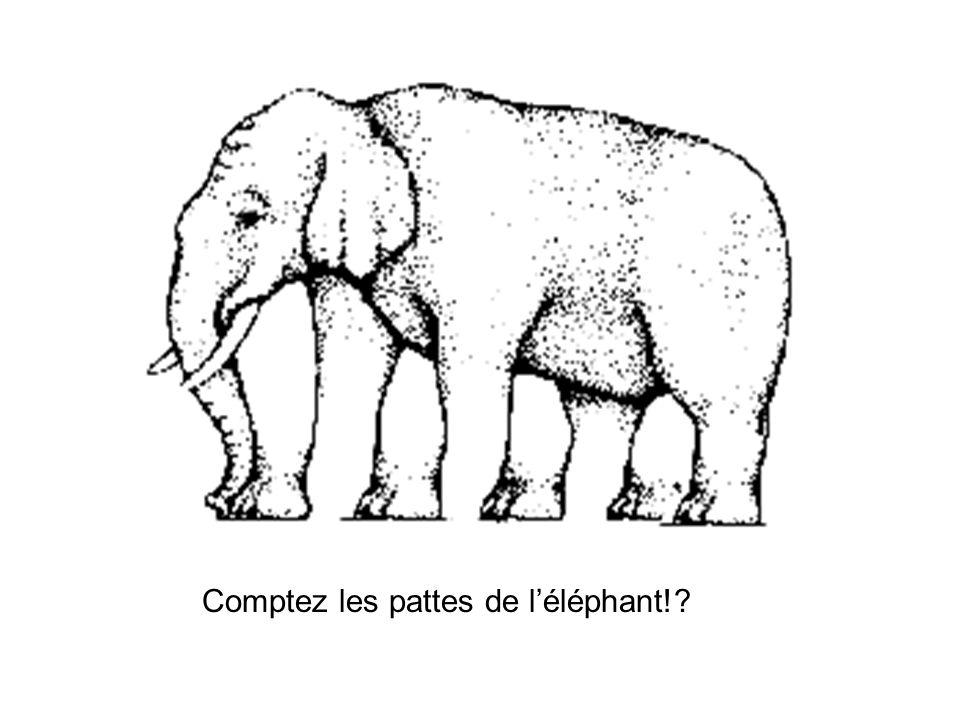 Comptez les pattes de l'éléphant!