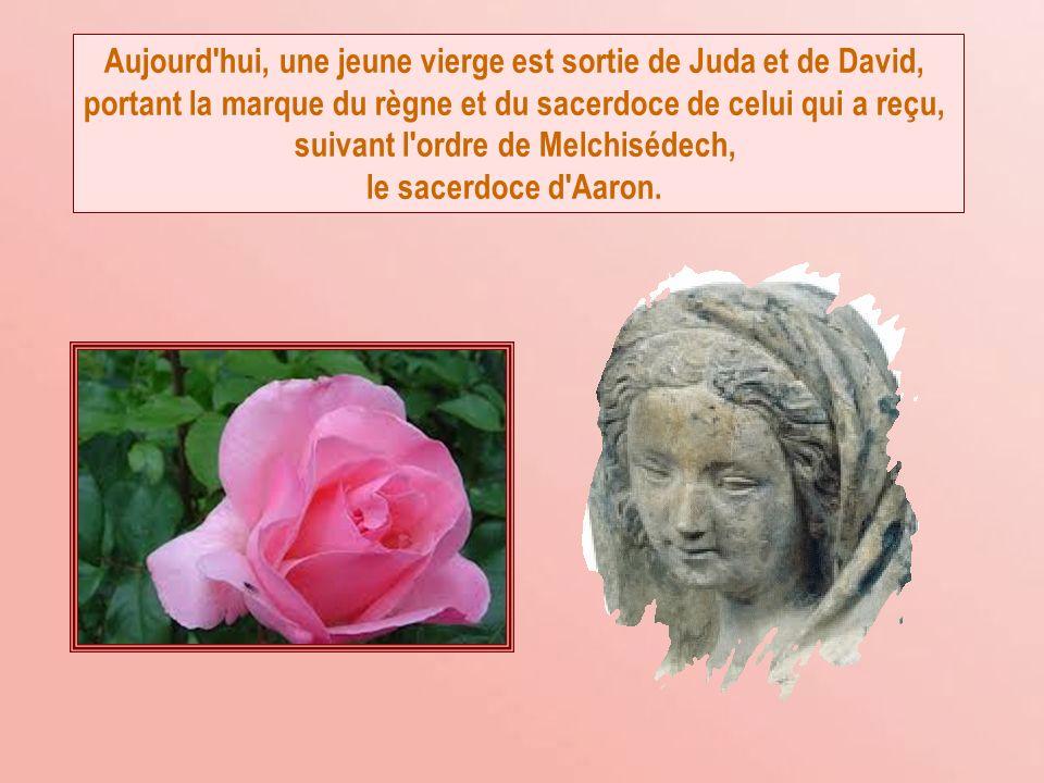 Aujourd hui, une jeune vierge est sortie de Juda et de David,