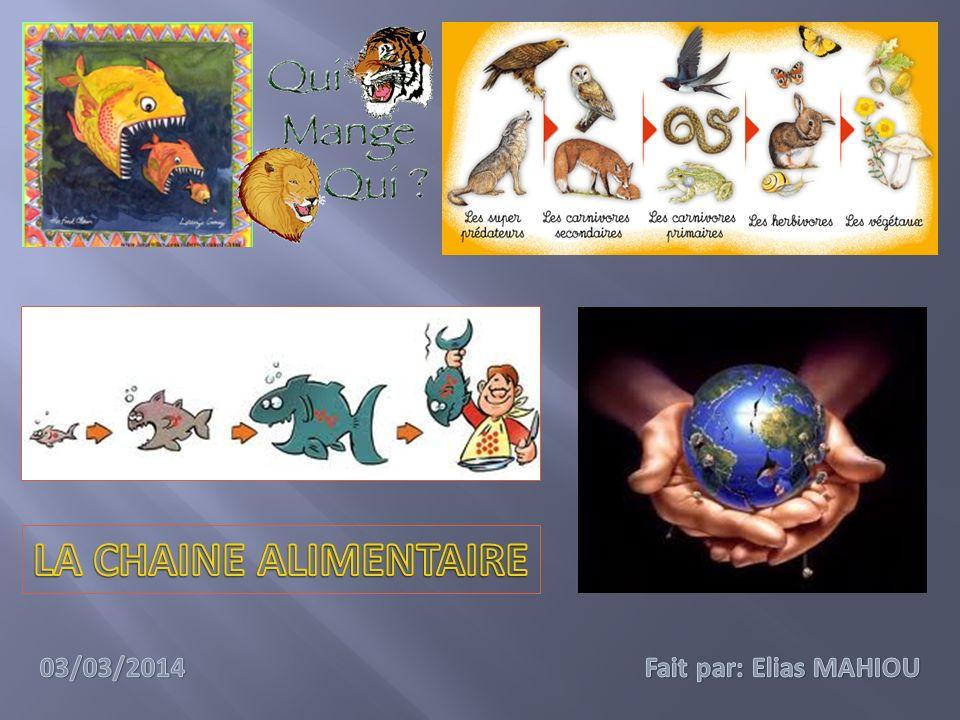 LA CHAINE ALIMENTAIRE 03/03/2014 Fait par: Elias MAHIOU