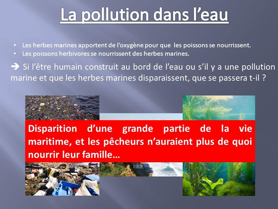 La pollution dans l'eau