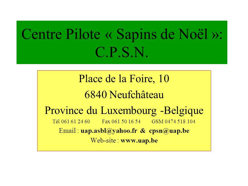 Centre Pilote « Sapins de Noël »: C.P.S.N.