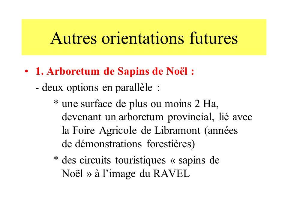 Autres orientations futures