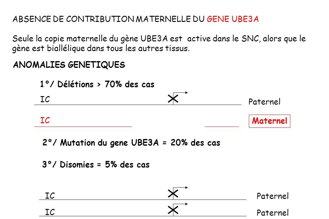 ABSENCE DE CONTRIBUTION MATERNELLE DU GENE UBE3A