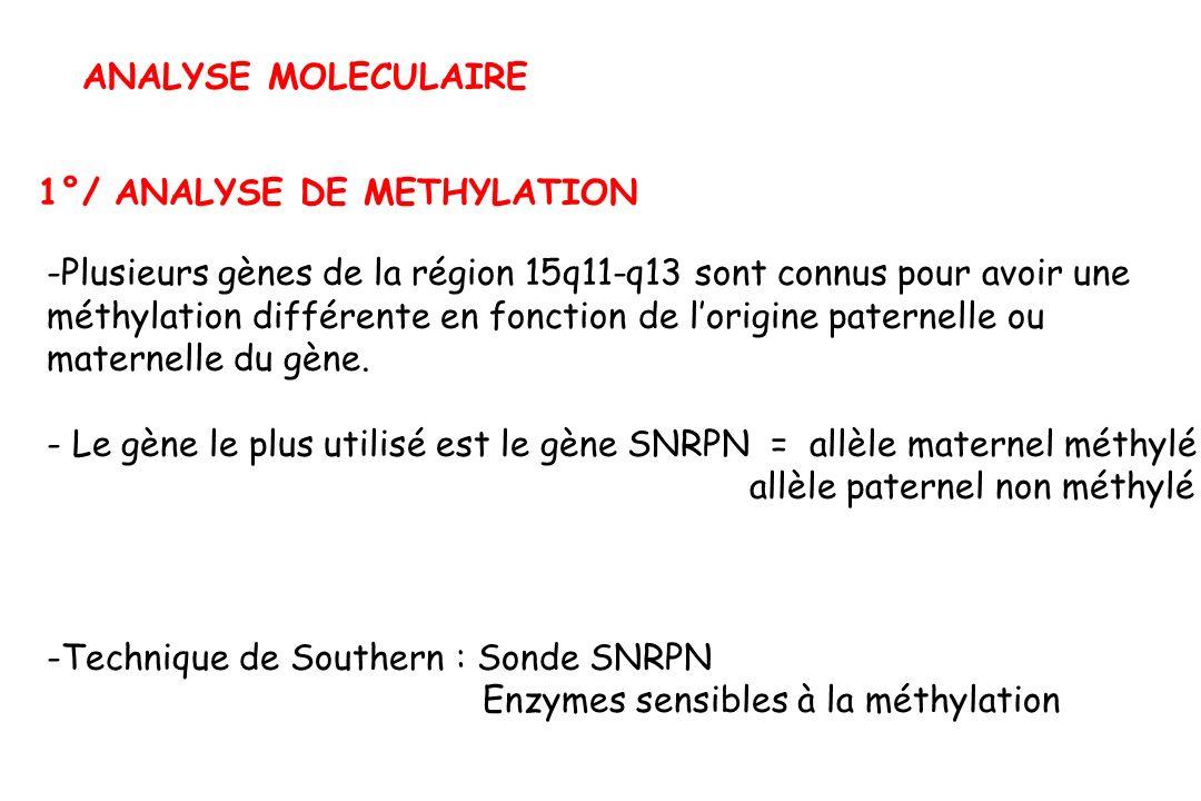 ANALYSE MOLECULAIRE 1°/ ANALYSE DE METHYLATION. Plusieurs gènes de la région 15q11-q13 sont connus pour avoir une.
