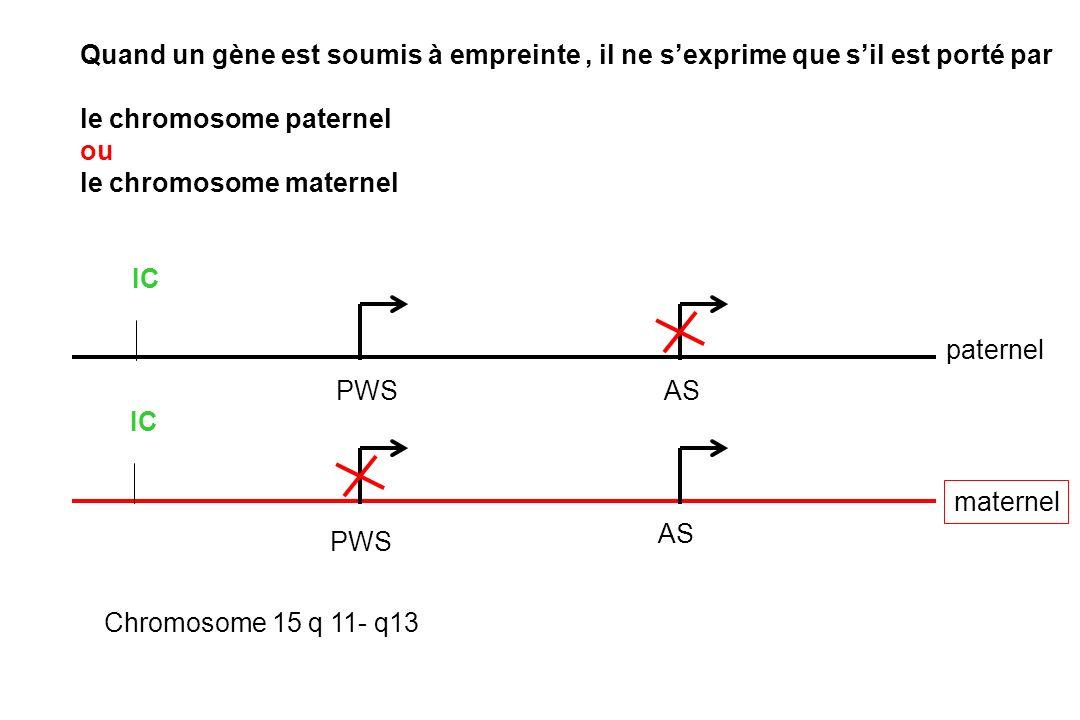 Quand un gène est soumis à empreinte , il ne s'exprime que s'il est porté par