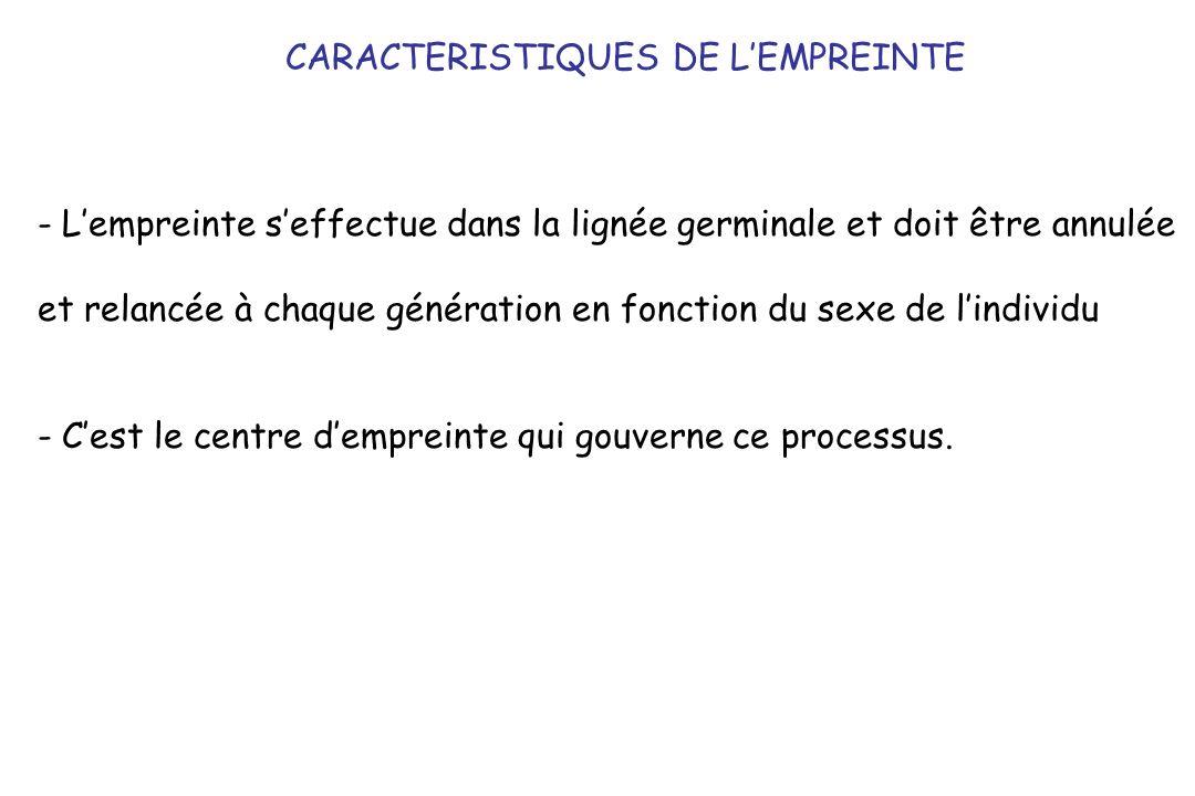 CARACTERISTIQUES DE L'EMPREINTE