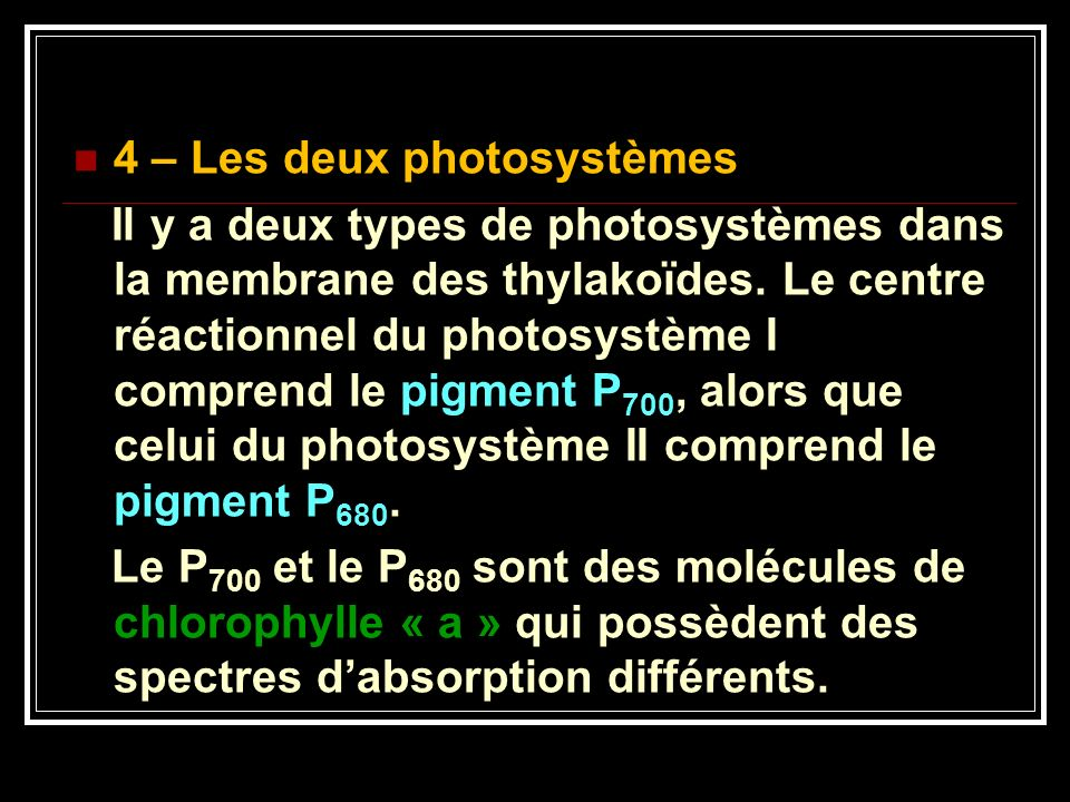 4 – Les deux photosystèmes