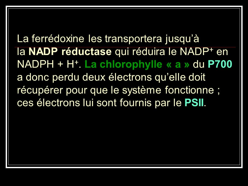 La ferrédoxine les transportera jusqu'à la NADP réductase qui réduira le NADP+ en NADPH + H+.