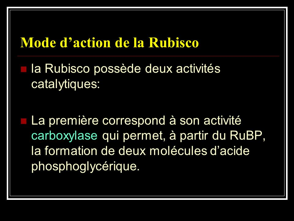 Mode d'action de la Rubisco