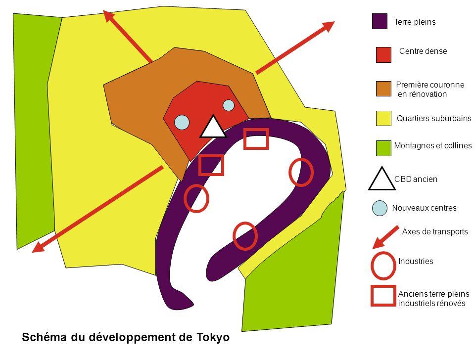 Schéma du développement de Tokyo
