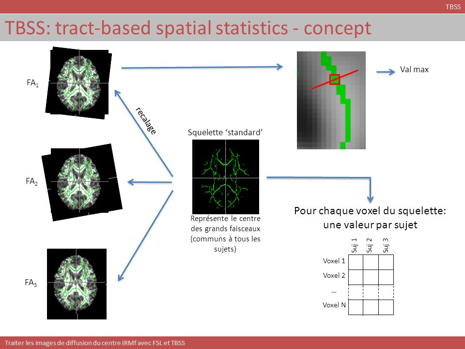 TBSS: tract-based spatial statistics - concept