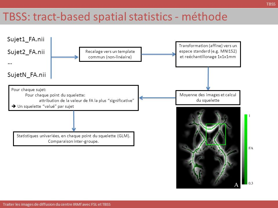 TBSS: tract-based spatial statistics - méthode