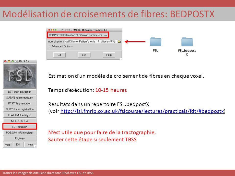Modélisation de croisements de fibres: BEDPOSTX
