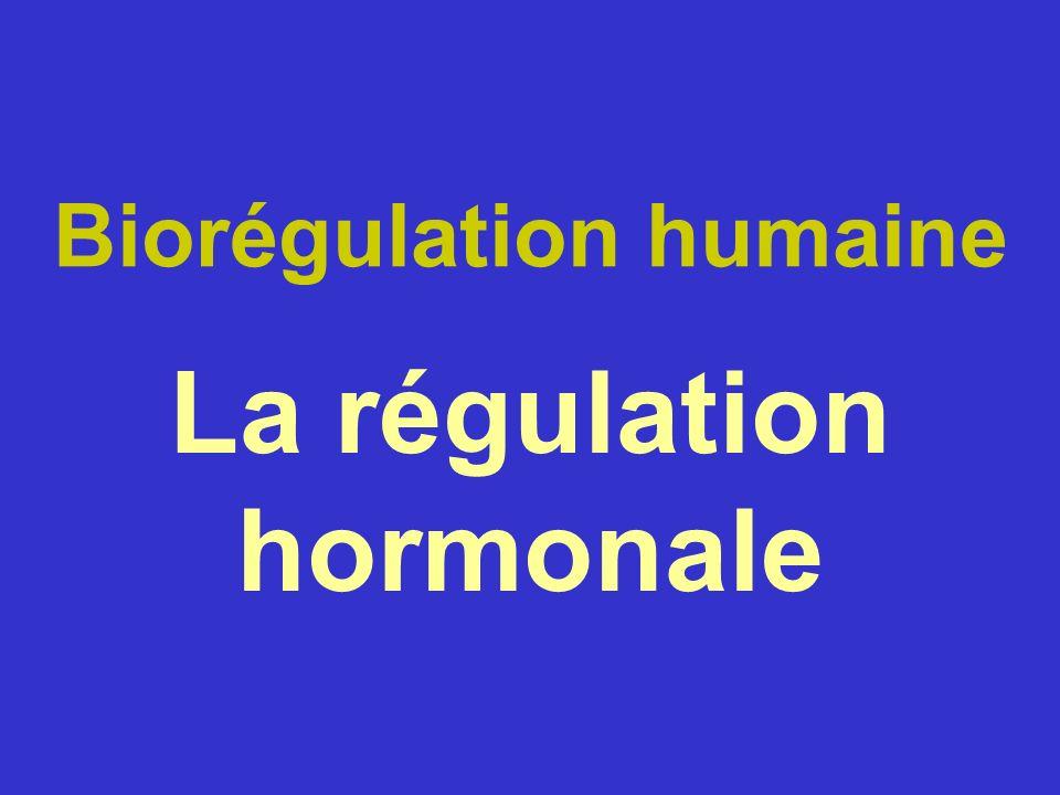 Biorégulation humaine La régulation hormonale
