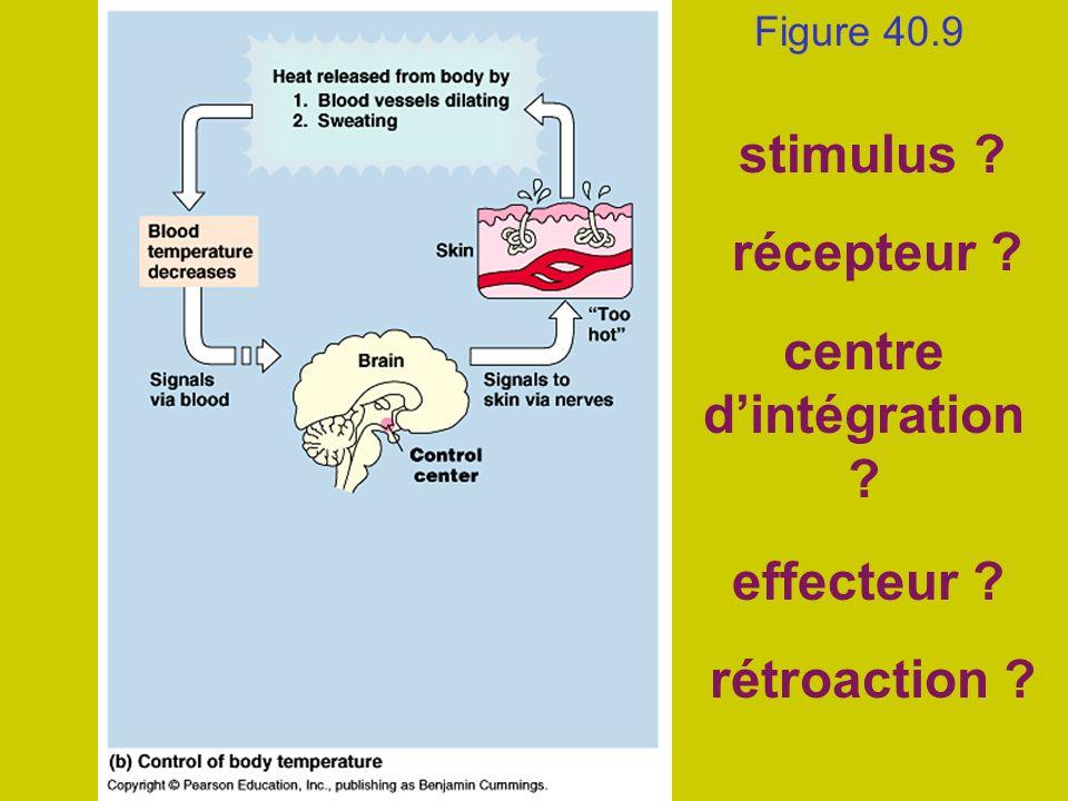 stimulus récepteur centre d'intégration effecteur