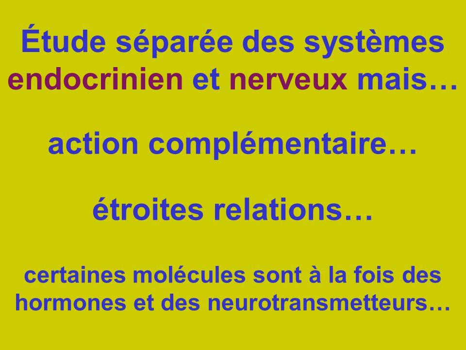 Étude séparée des systèmes endocrinien et nerveux mais…