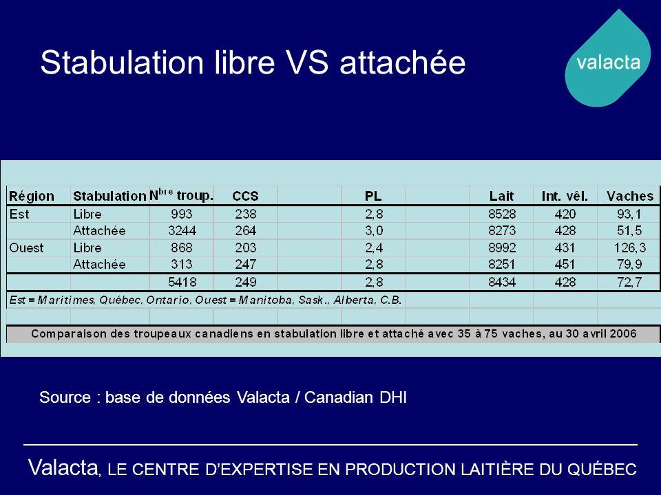 Stabulation libre VS attachée