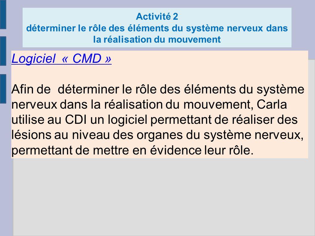 Activité 2 déterminer le rôle des éléments du système nerveux dans la réalisation du mouvement