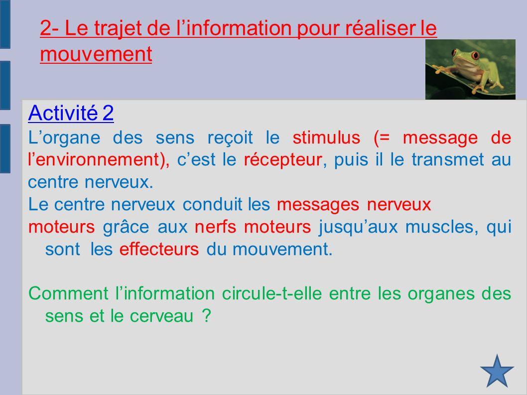 2- Le trajet de l'information pour réaliser le mouvement