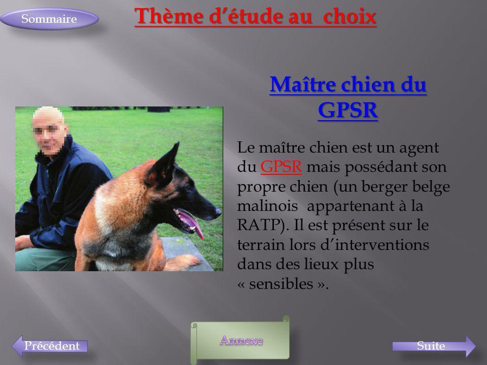 Thème d'étude au choix Maître chien du GPSR