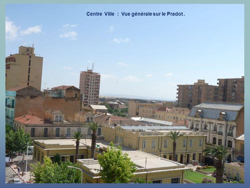 Centre Ville : Vue générale sur le Pradot .