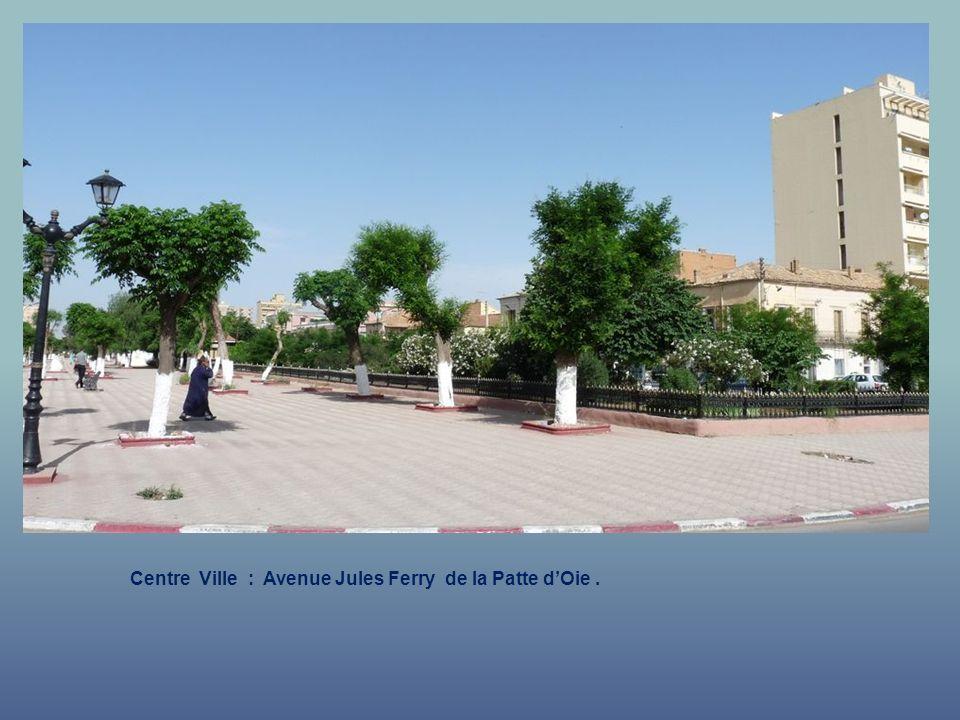 Centre Ville : Avenue Jules Ferry de la Patte d'Oie .