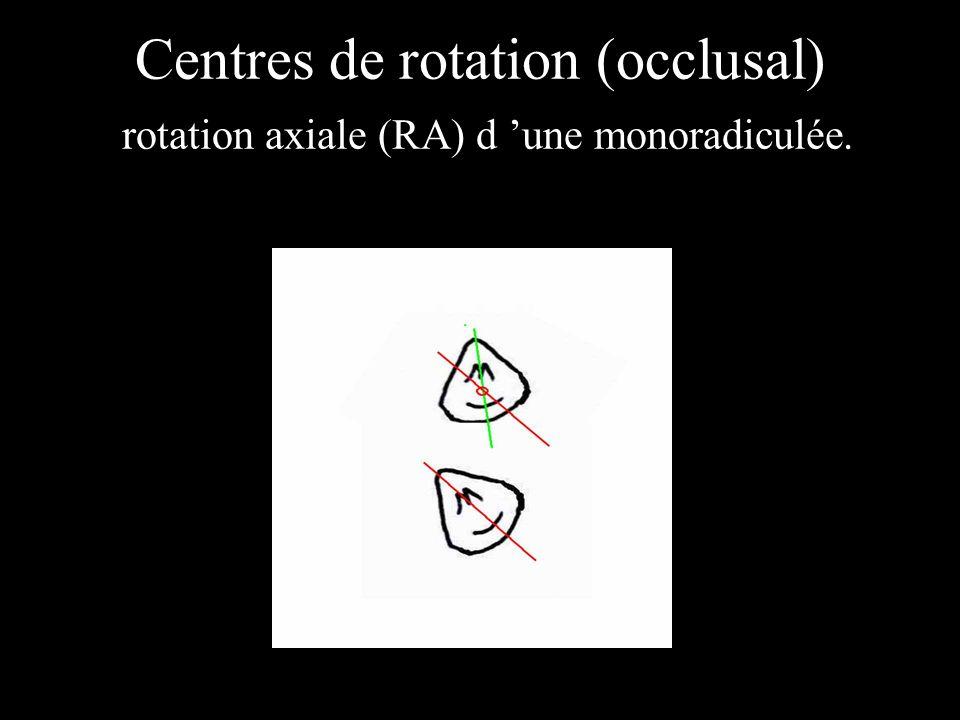 Centres de rotation (occlusal) rotation axiale (RA) d 'une monoradiculée.