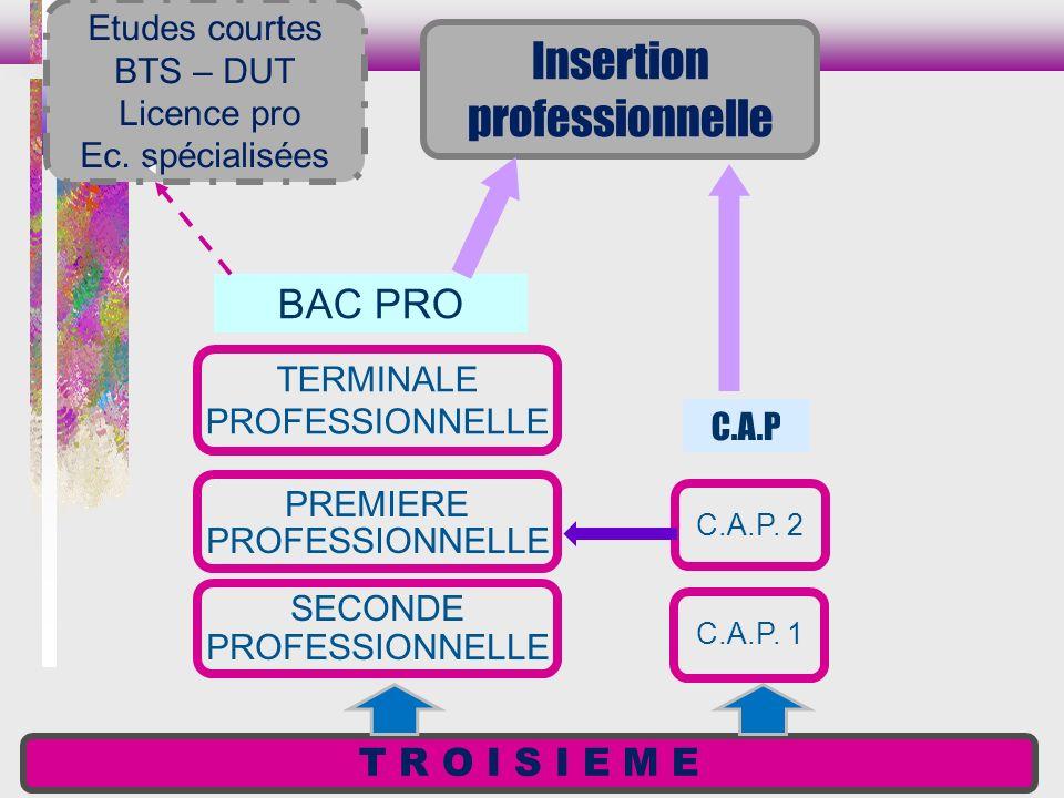 Insertion professionnelle BAC PRO T R O I S I E M E Etudes courtes