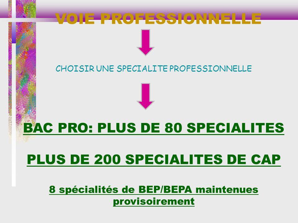 VOIE PROFESSIONNELLE BAC PRO: PLUS DE 80 SPECIALITES