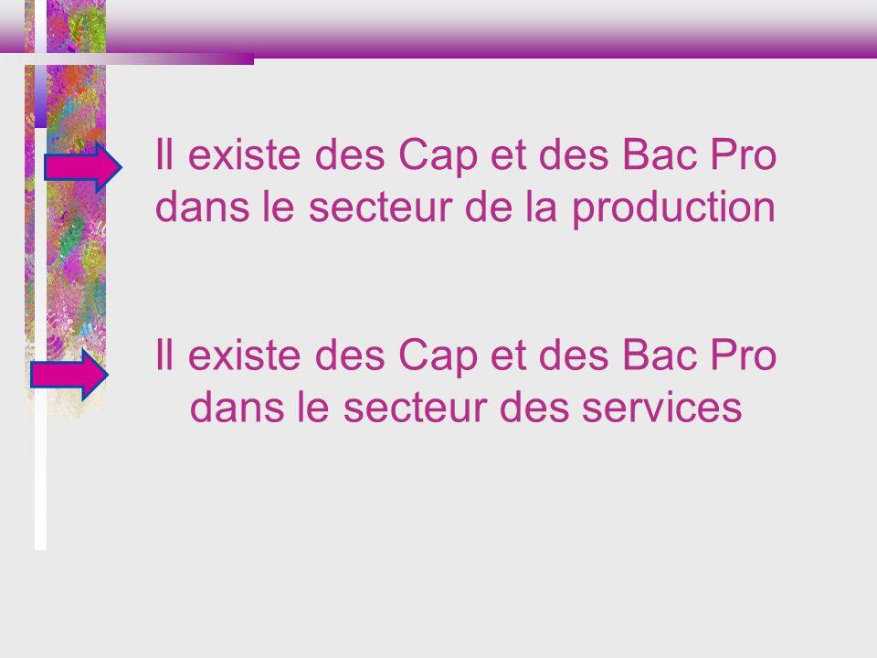 Il existe des Cap et des Bac Pro dans le secteur de la production
