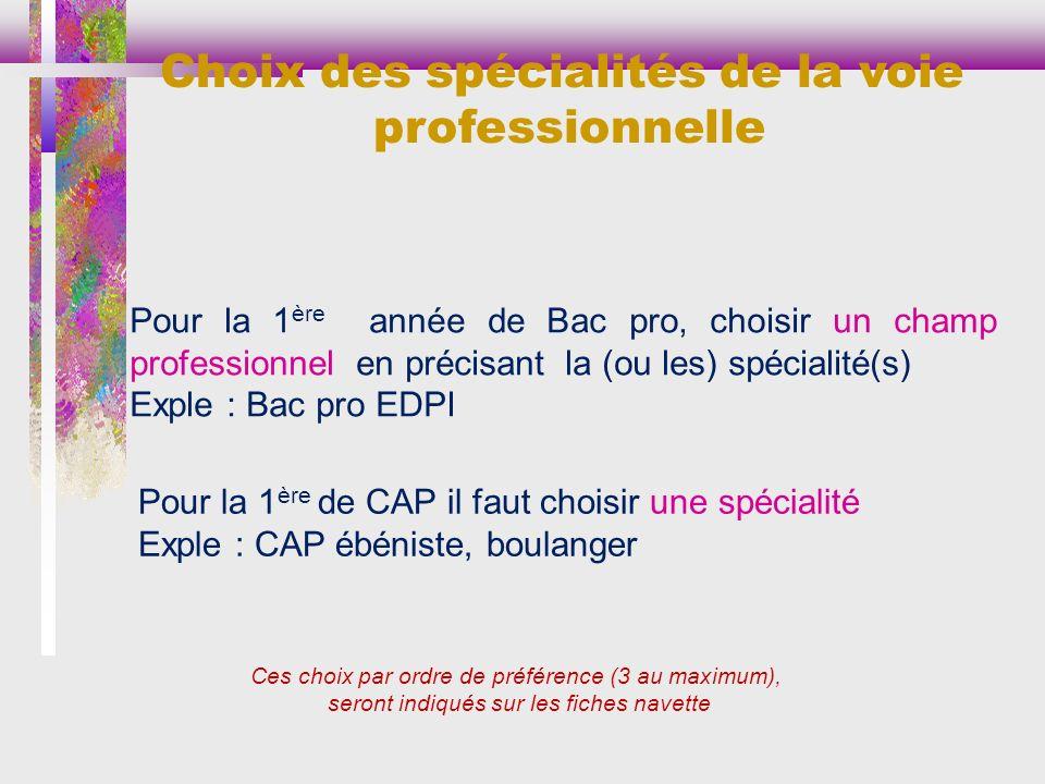 Choix des spécialités de la voie professionnelle
