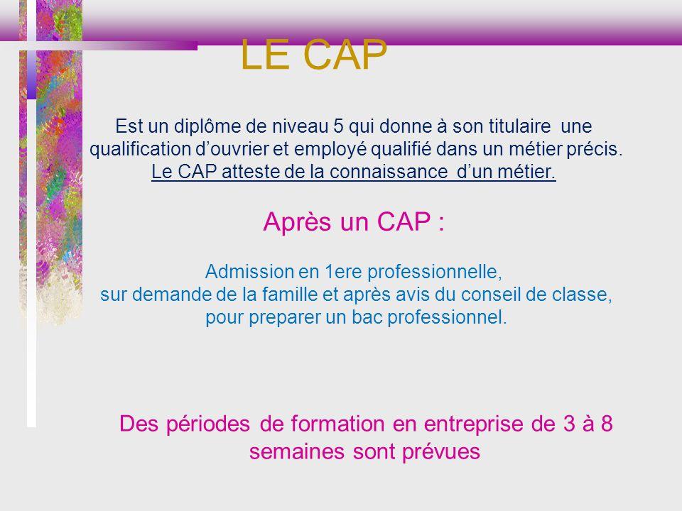 LE CAP Est un diplôme de niveau 5 qui donne à son titulaire une. qualification d'ouvrier et employé qualifié dans un métier précis.