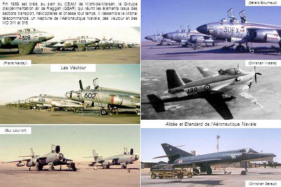 Alizée et Etendard de l'Aéronautique Navale