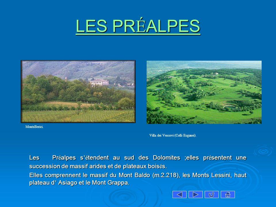 LES PRÉALPES Les Préalpes s'étendent au sud des Dolomites ;elles présentent une succession de massif arides et de plateaux boisés.