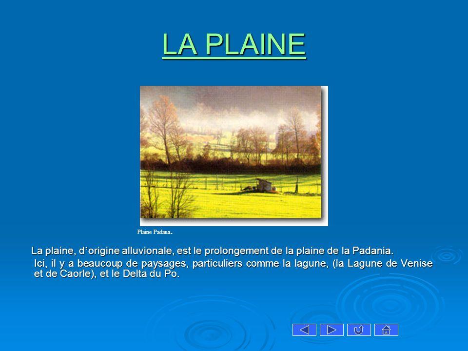 LA PLAINE Plaine Padana. La plaine, d'origine alluvionale, est le prolongement de la plaine de la Padania.