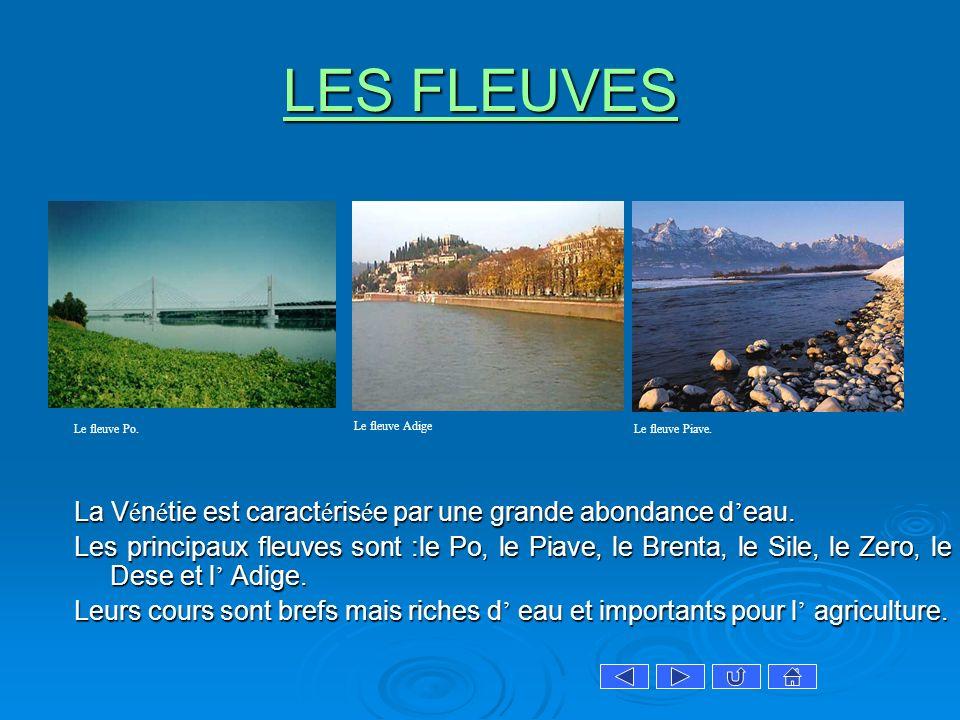 LES FLEUVES Le fleuve Po. Le fleuve Adige. Le fleuve Piave. La Vénétie est caractérisée par une grande abondance d'eau.