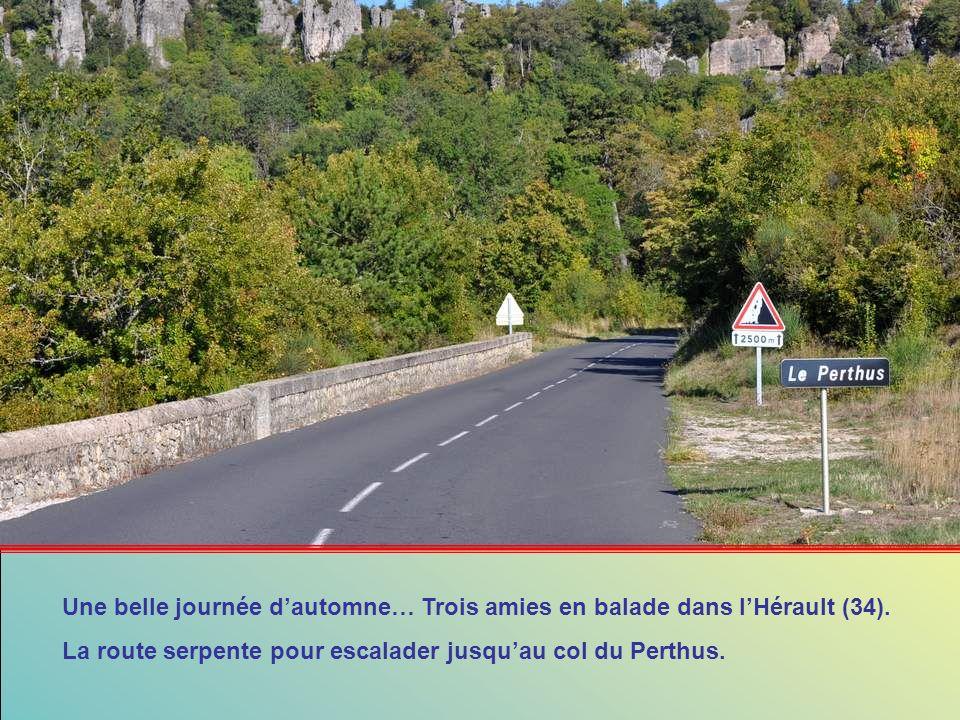 Une belle journée d'automne… Trois amies en balade dans l'Hérault (34).