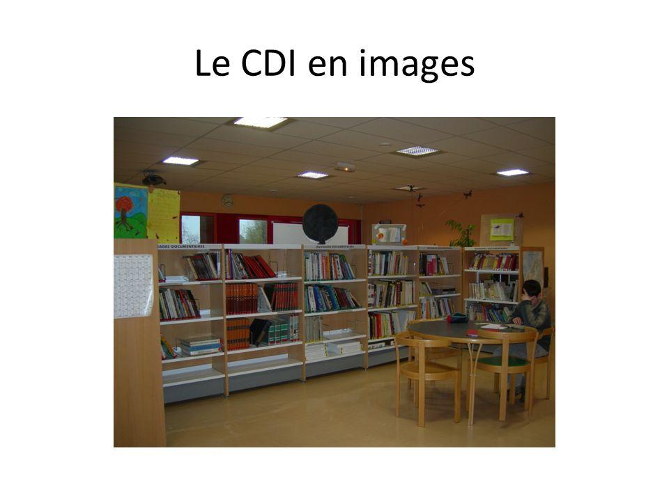 Le CDI en images