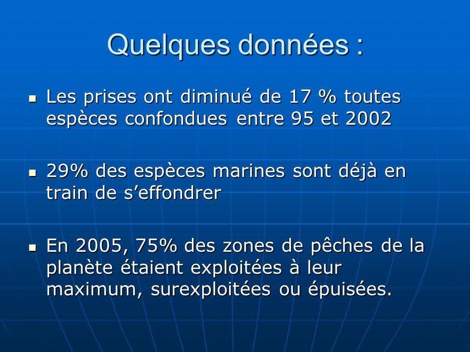 Quelques données : Les prises ont diminué de 17 % toutes espèces confondues entre 95 et 2002.