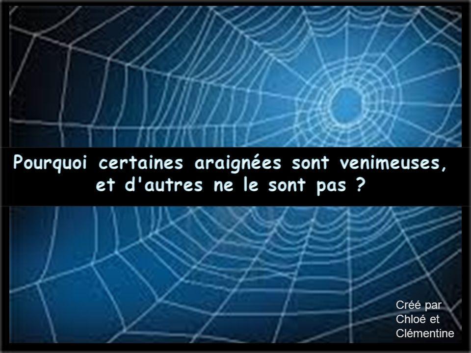 Pourquoi certaines araignées sont venimeuses, et d autres ne le sont pas