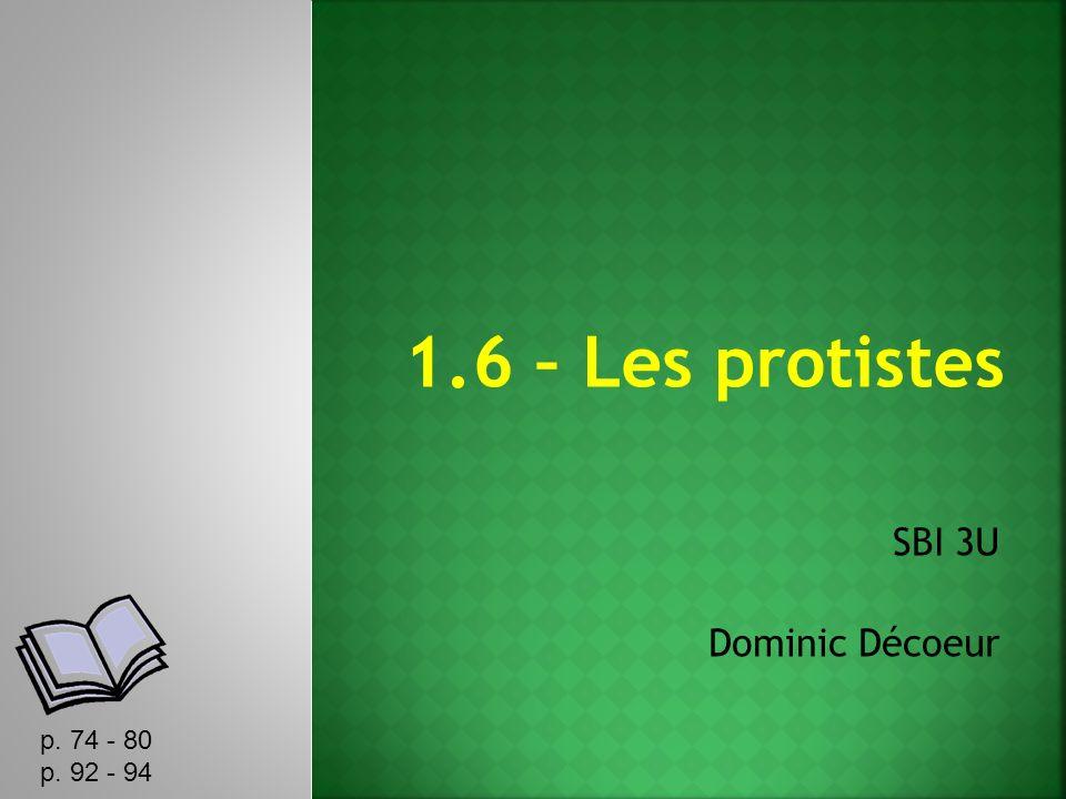 1.6 – Les protistes SBI 3U Dominic Décoeur p. 74 - 80 p. 92 - 94