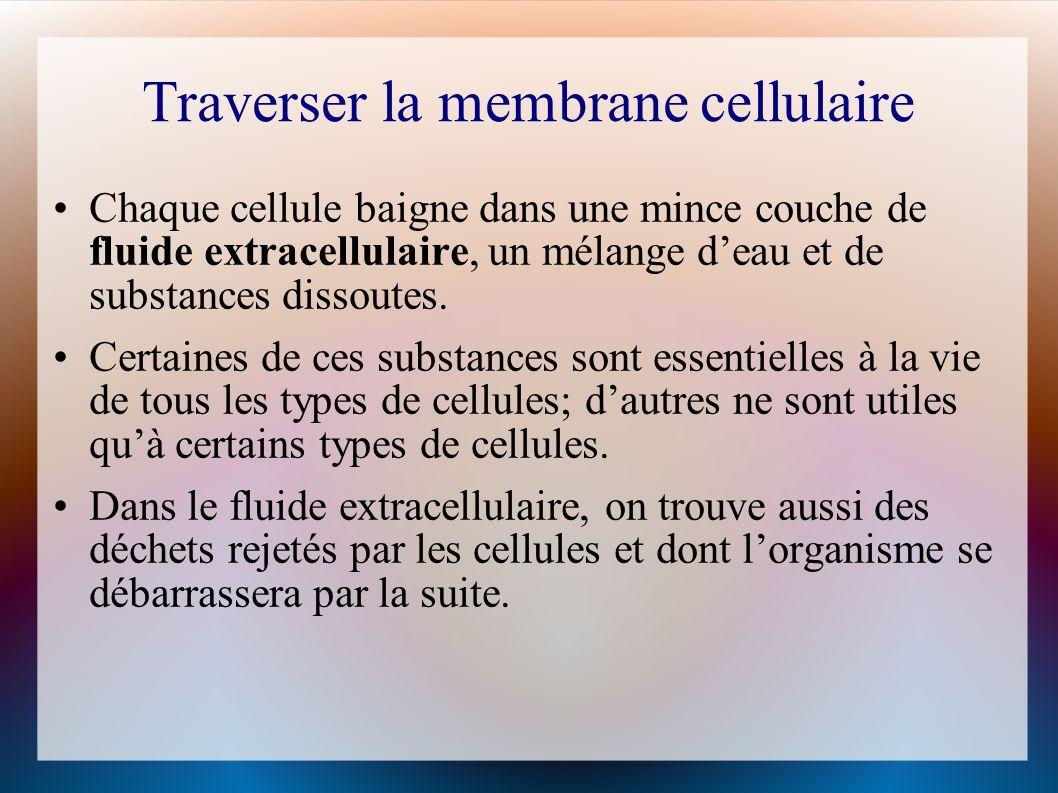 Traverser la membrane cellulaire