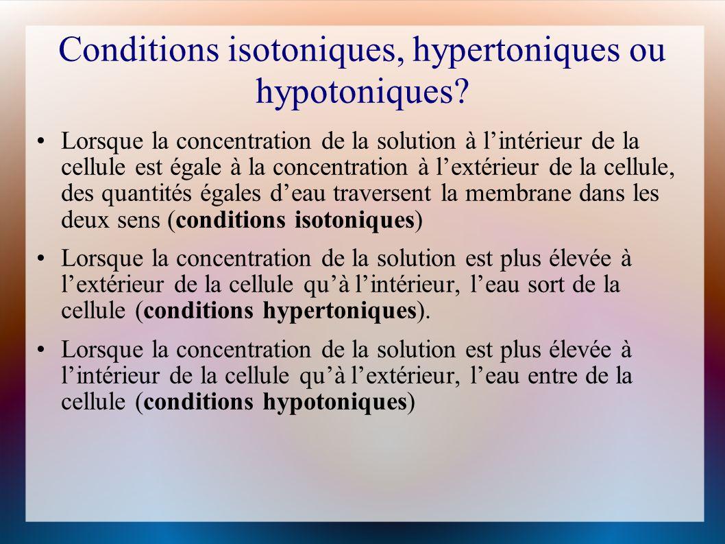 Conditions isotoniques, hypertoniques ou hypotoniques