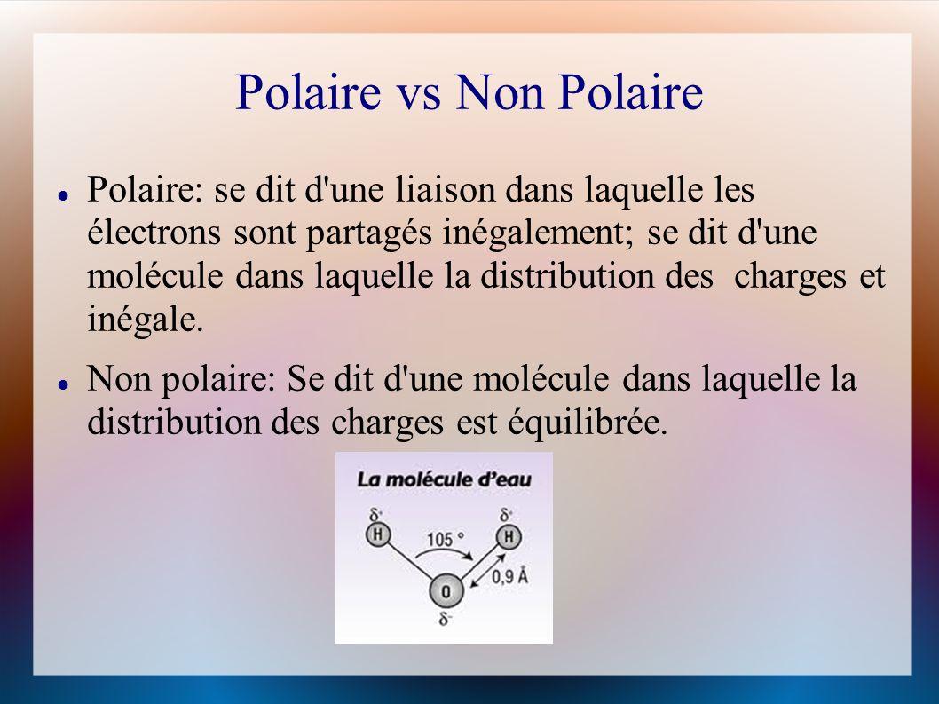 Polaire vs Non Polaire