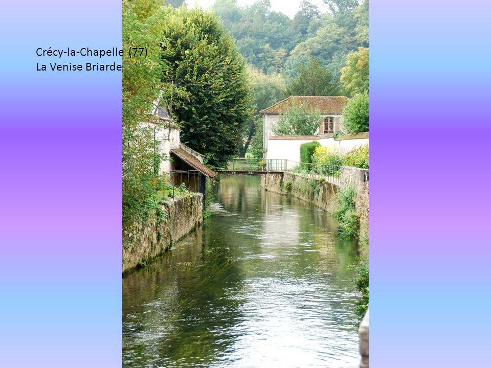 Crécy-la-Chapelle (77) La Venise Briarde