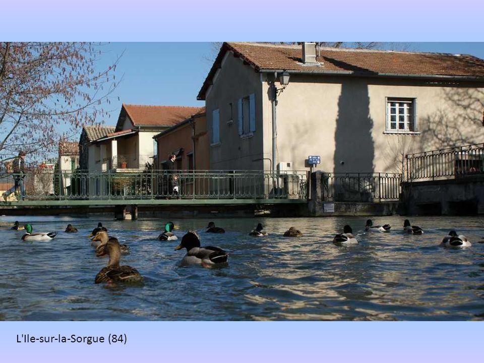 L Ile-sur-la-Sorgue (84)
