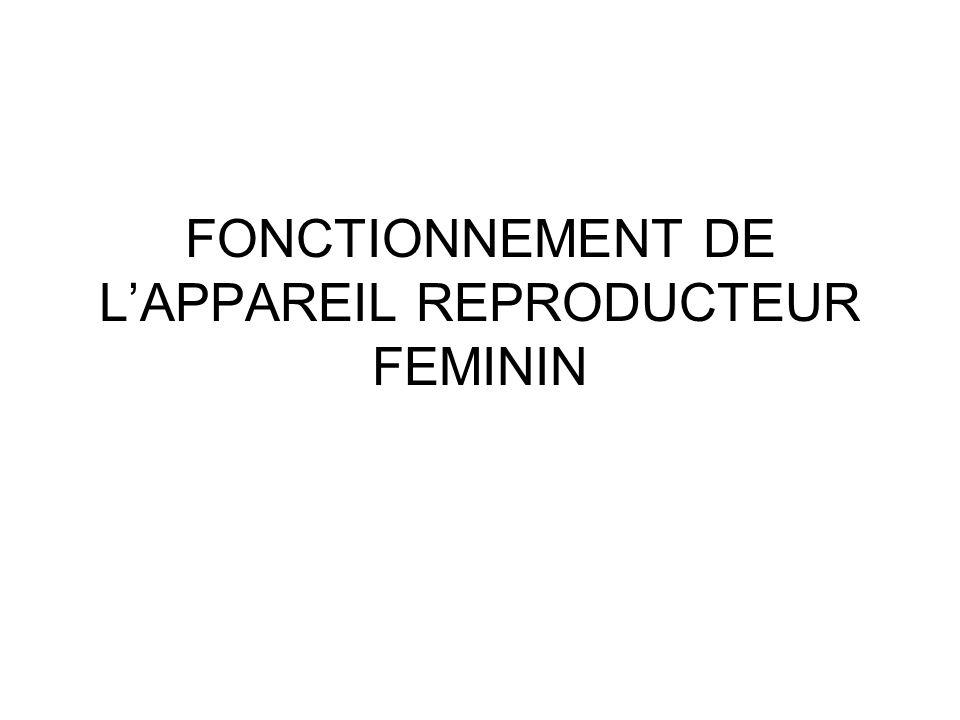 FONCTIONNEMENT DE L'APPAREIL REPRODUCTEUR FEMININ