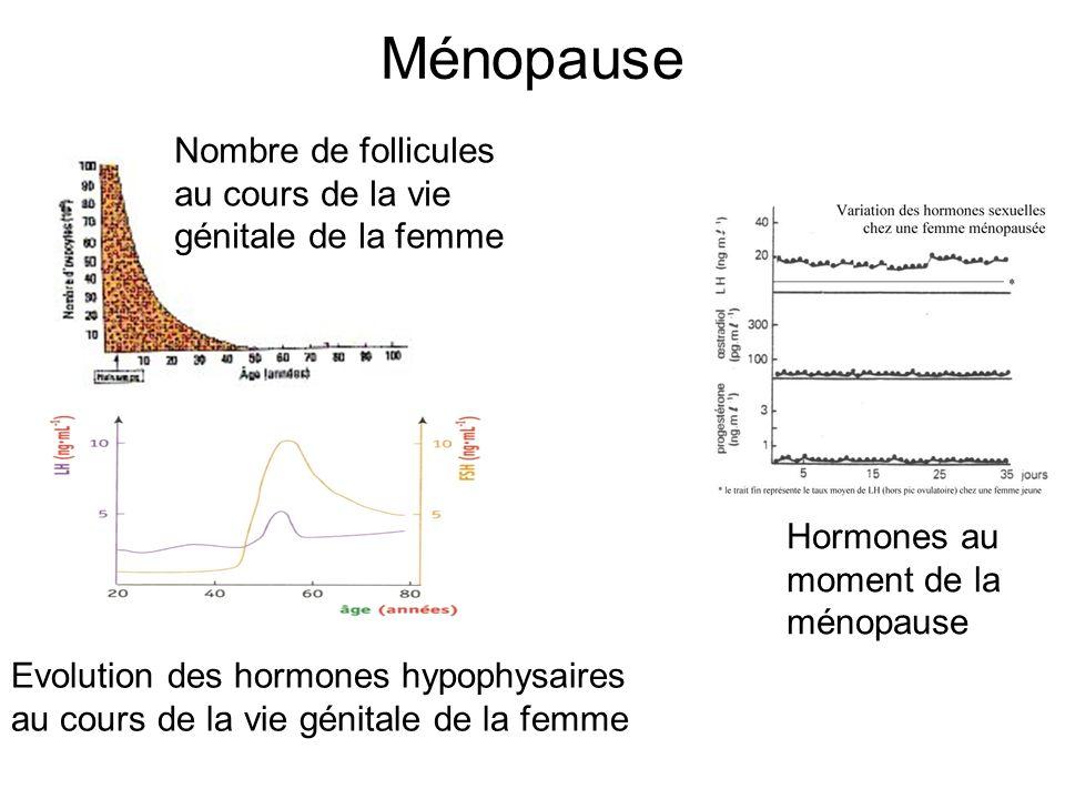Ménopause Nombre de follicules au cours de la vie génitale de la femme